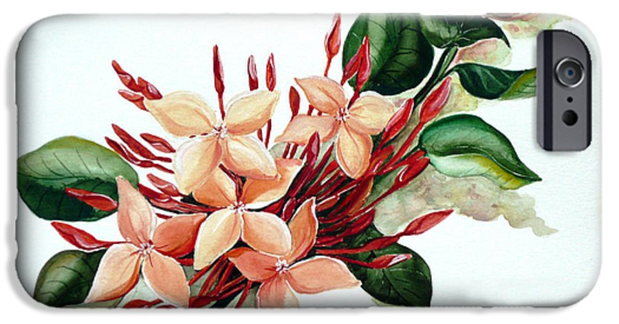 Floral Peach Flower Watercolor Ixora Botanical Bloom IPhone 6 Case featuring the painting Peachy Ixora by Karin Dawn Kelshall- Best
