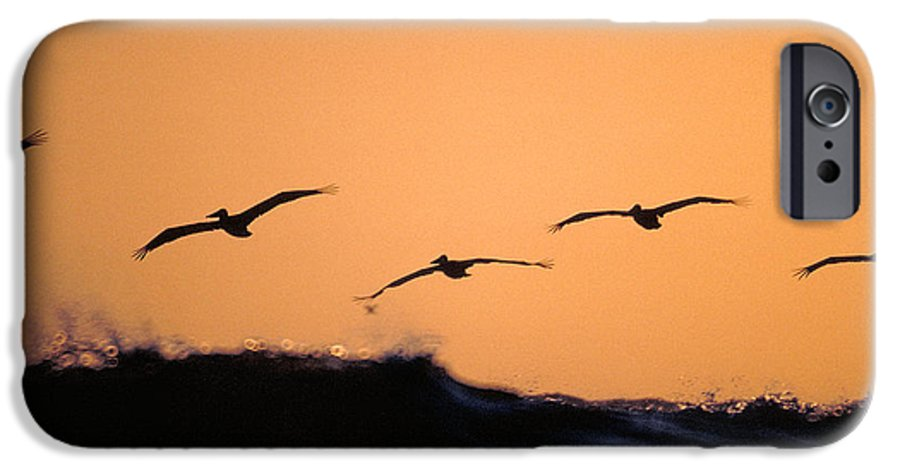 Pelicans IPhone 6 Case featuring the photograph Pelicans Over The Pacific by Michael Mogensen
