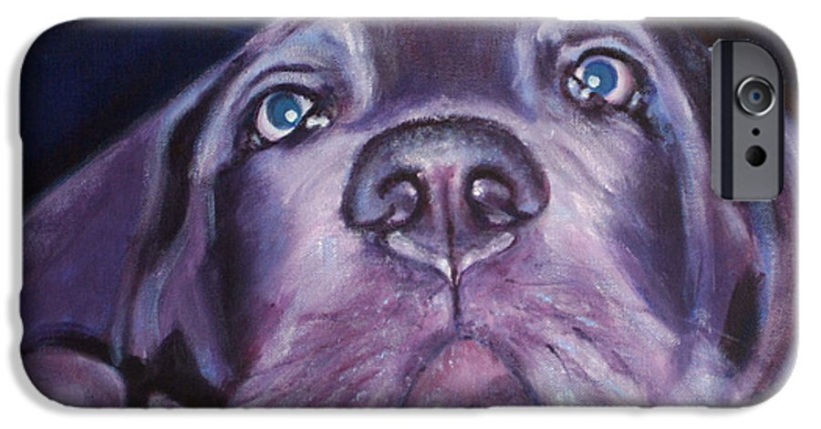 Portrait IPhone 6 Case featuring the painting Pepper by Fiona Jack