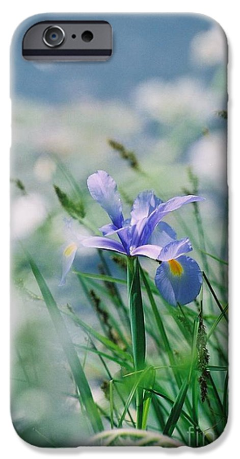 Periwinkle IPhone 6 Case featuring the photograph Periwinkle Iris by Nadine Rippelmeyer