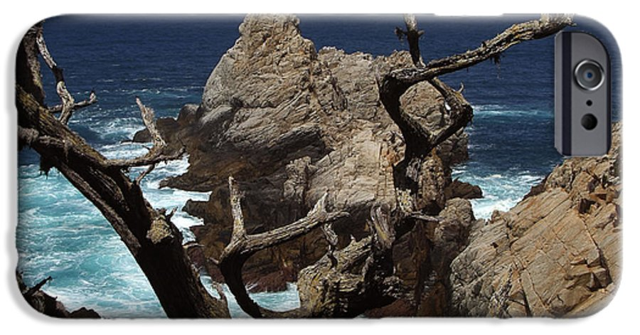 Carmel IPhone 6 Case featuring the photograph Point Lobos Rocks And Branches by Charlene Mitchell