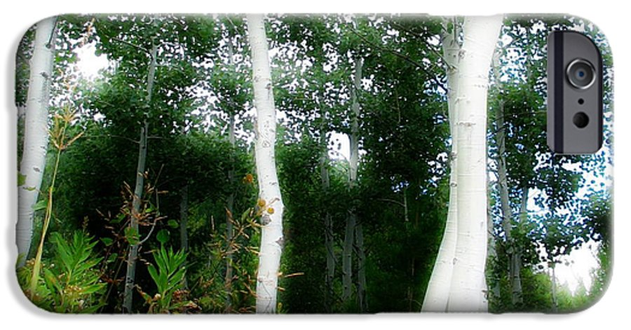 Aspens IPhone 6 Case featuring the photograph Quaking by Idaho Scenic Images Linda Lantzy