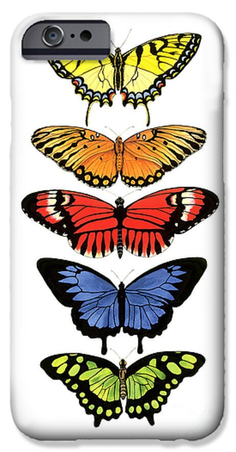 Butterflies IPhone 6 Case featuring the painting Rainbow Butterflies by Lucy Arnold