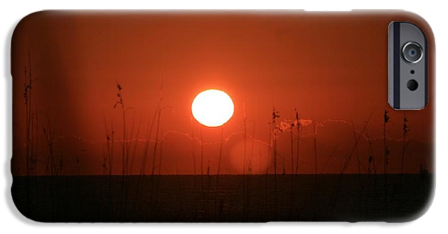 Sunset IPhone 6 Case featuring the photograph Red Sunset And Grasses by Nadine Rippelmeyer