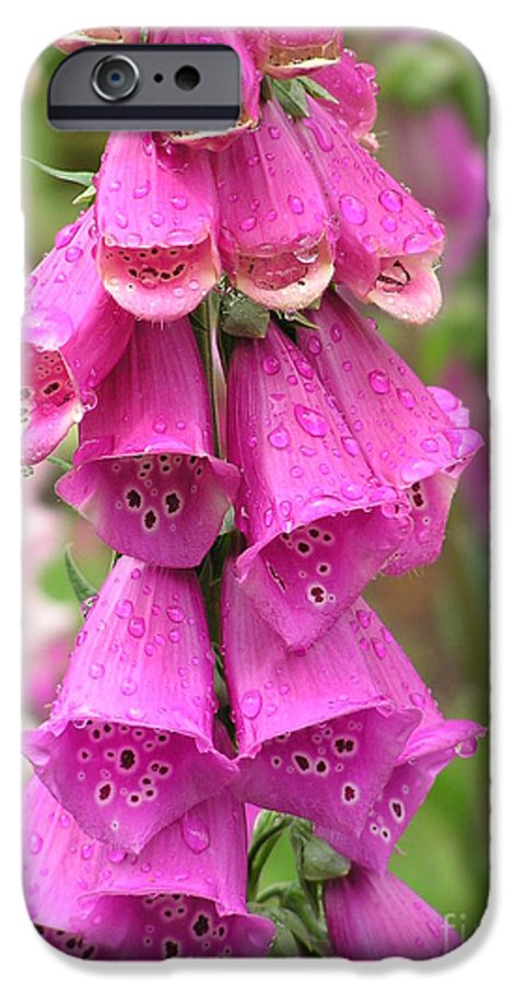 Fox Glove IPhone 6 Case featuring the photograph Ringing Bells by Louise Magno