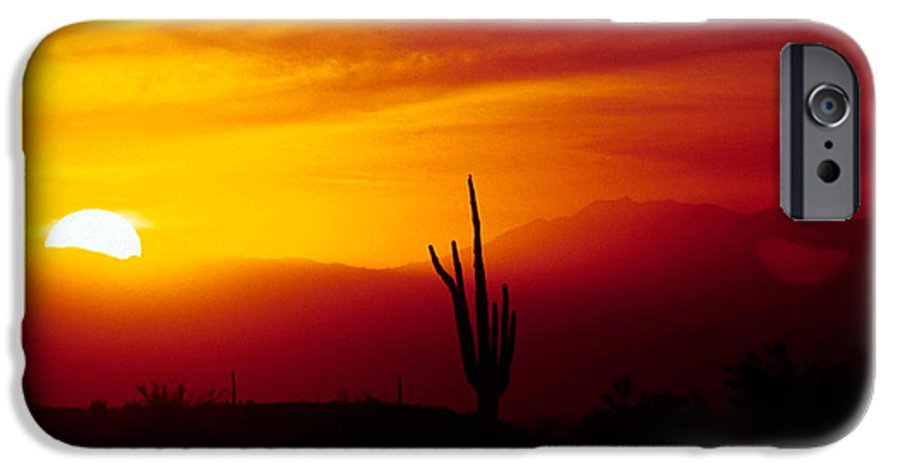 Arizona IPhone 6 Case featuring the photograph Saguaro Sunset by Randy Oberg