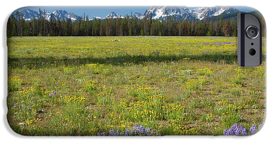 Wildflowers IPhone 6 Case featuring the photograph Sawtooths And Wildflowers by Idaho Scenic Images Linda Lantzy