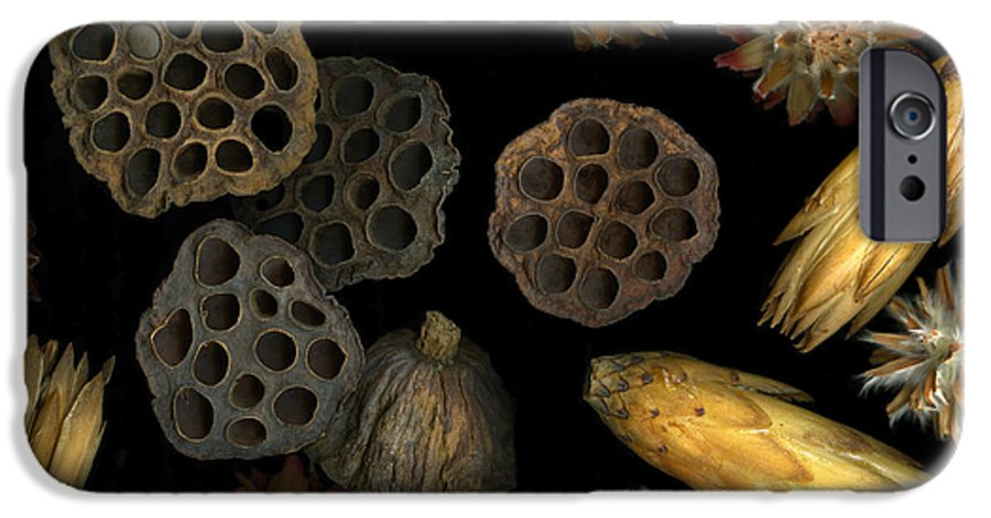 Pods IPhone 6 Case featuring the photograph Seeds And Pods by Christian Slanec