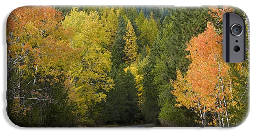 Trees IPhone 6 Case featuring the photograph Selkirk Color by Idaho Scenic Images Linda Lantzy