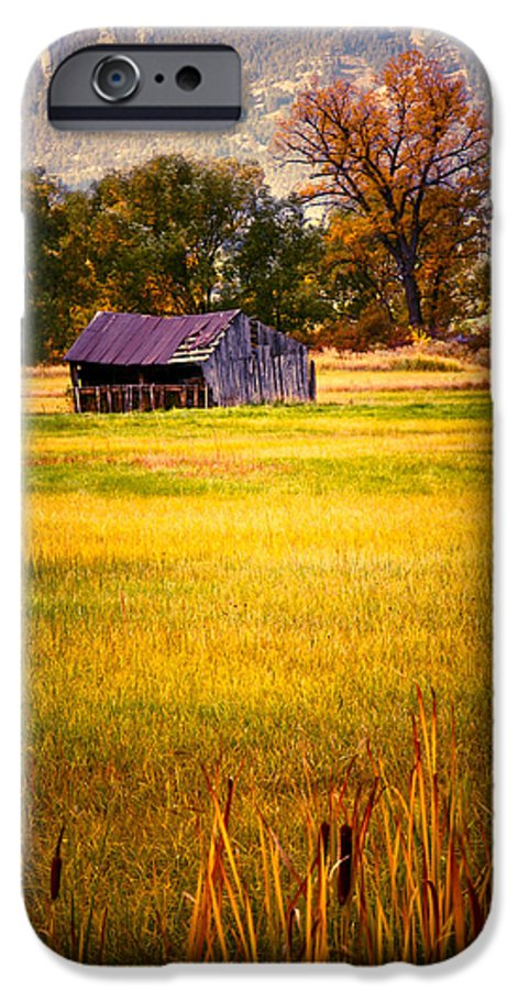 Shed IPhone 6 Case featuring the photograph Shed In Sunlight by Marilyn Hunt