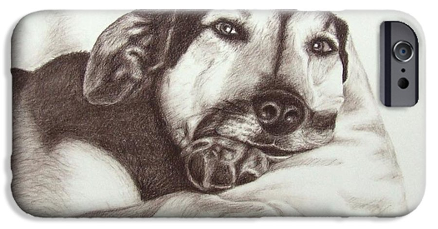 Dog IPhone 6 Case featuring the drawing Shepherd Dog Frieda by Nicole Zeug