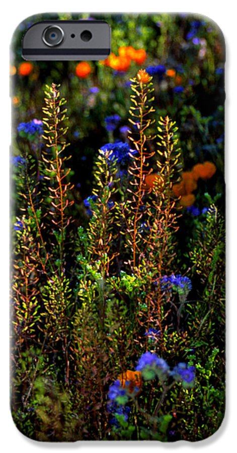 Flowers IPhone 6 Case featuring the photograph Shimmers by Randy Oberg