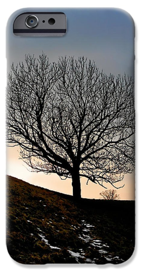 Tree IPhone 6 Case featuring the photograph Silhouette Of A Tree On A Winter Day by Christine Till