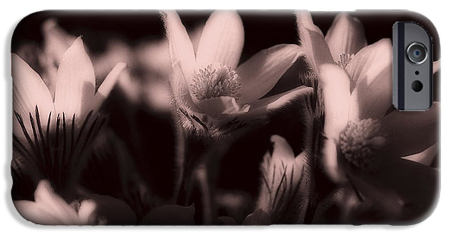 Flowers IPhone 6 Case featuring the photograph Sleepy Flowers 2 by Marilyn Hunt