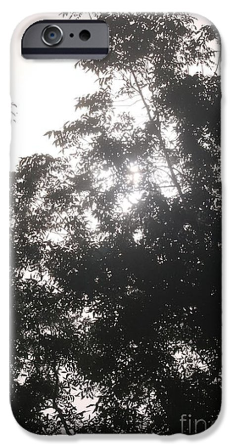 Light IPhone 6 Case featuring the photograph Soft Light by Nadine Rippelmeyer