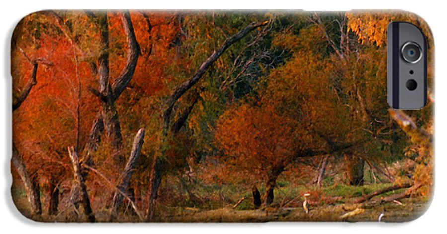 Landscape IPhone 6 Case featuring the photograph Squaw Creek Egrets by Steve Karol
