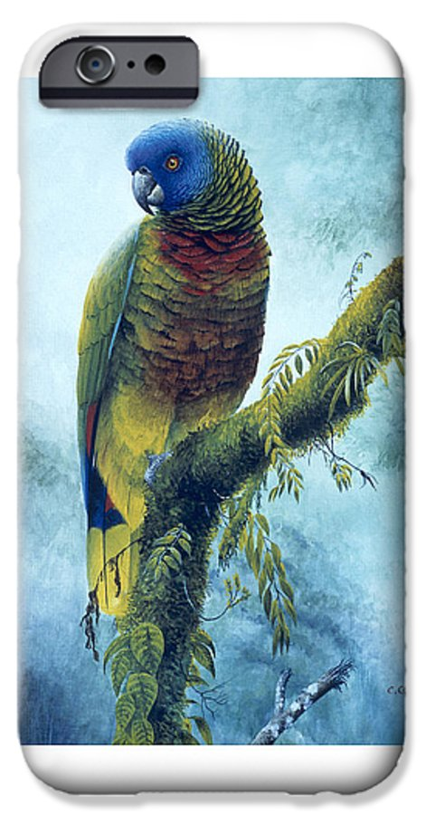 Chris Cox IPhone 6 Case featuring the painting St. Lucia Parrot - Majestic by Christopher Cox