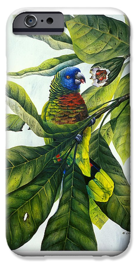 Chris Cox IPhone 6 Case featuring the painting St. Lucia Parrot And Fruit by Christopher Cox