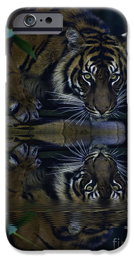 Sumatran Tiger IPhone 6 Case featuring the photograph Sumatran Tiger Reflection by Avalon Fine Art Photography