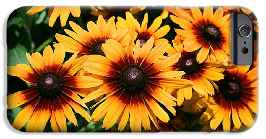 Sunflowers IPhone 6 Case featuring the photograph Sunflowers by Dean Triolo
