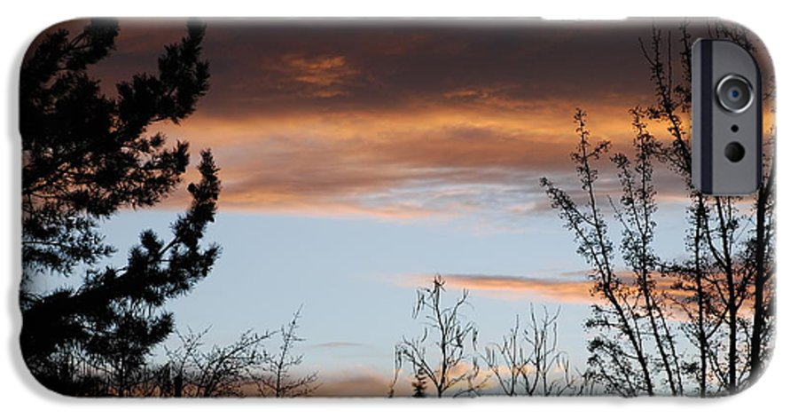 Sunset IPhone 6 Case featuring the photograph Sunset Thru The Trees by Rob Hans