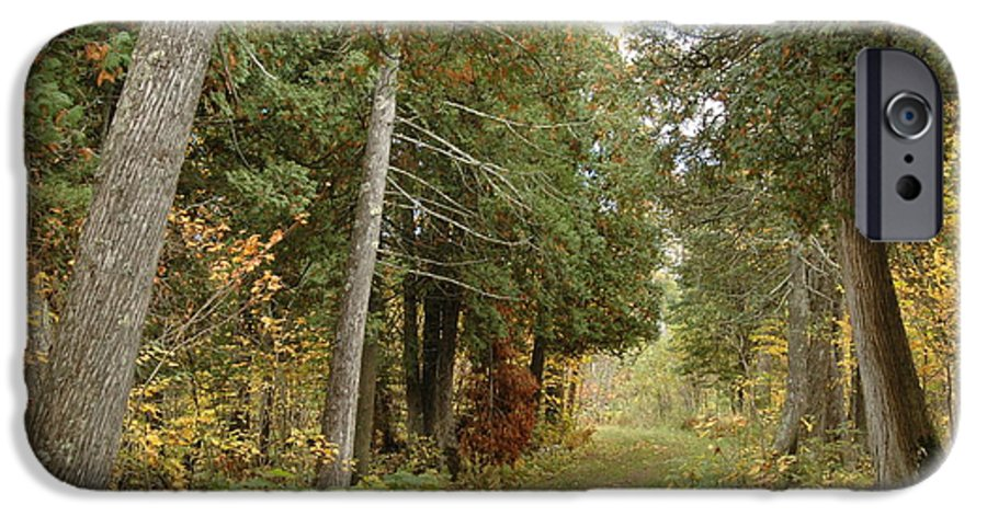 Landscape IPhone 6 Case featuring the photograph Tettegouche State Park by Kathy Schumann