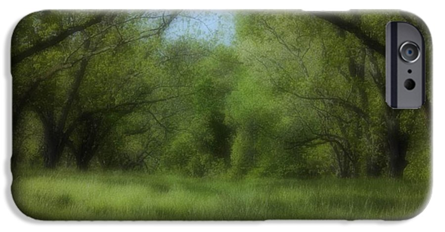Landscape IPhone 6 Case featuring the photograph The Meadow by Ayesha Lakes