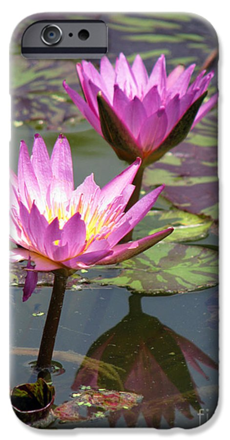 Lillypad IPhone 6 Case featuring the photograph The Pond by Amanda Barcon