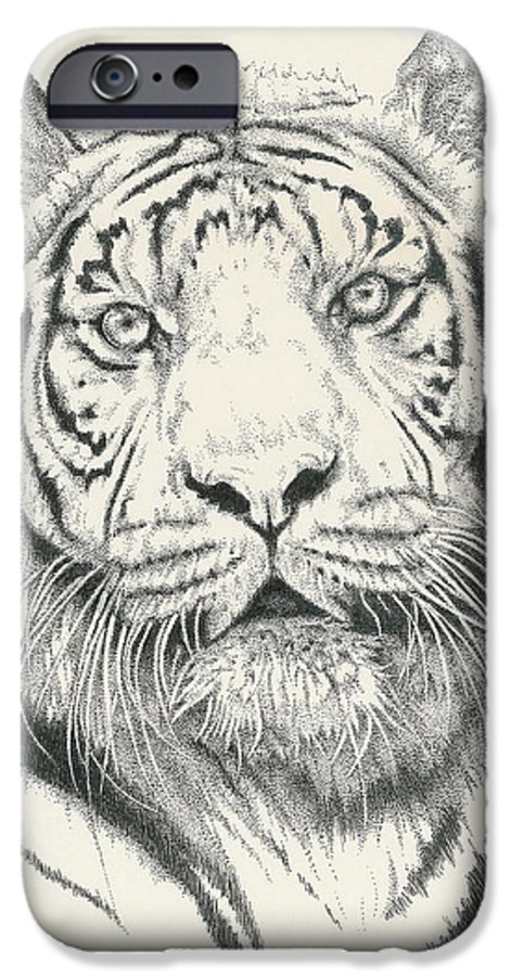 Tiger IPhone 6 Case featuring the drawing Tigerlily by Barbara Keith