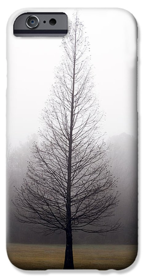 Scenic IPhone 6 Case featuring the photograph Tree In Fog by Ayesha Lakes