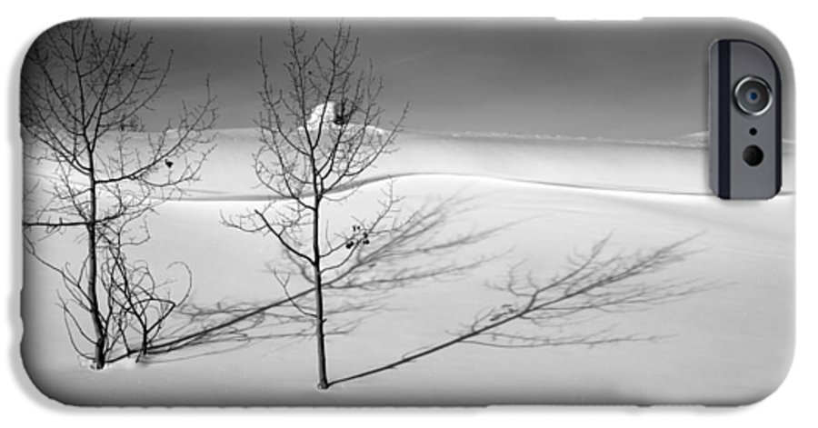 Nature IPhone 6 Case featuring the photograph Twins by Skip Hunt