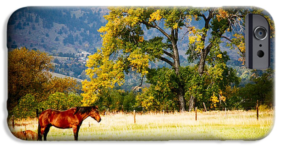 Animal IPhone 6 Case featuring the photograph Two Horses by Marilyn Hunt