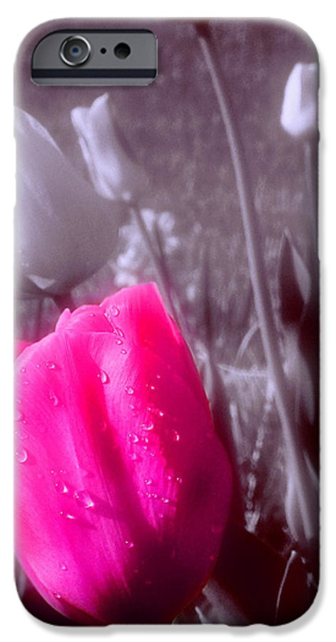Flower IPhone 6 Case featuring the photograph Uniqueness by Kenneth Krolikowski