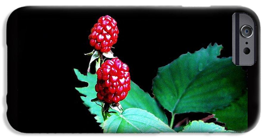 Black Berries IPhone 6 Case featuring the digital art Unripe Blackberries by Kenna Westerman