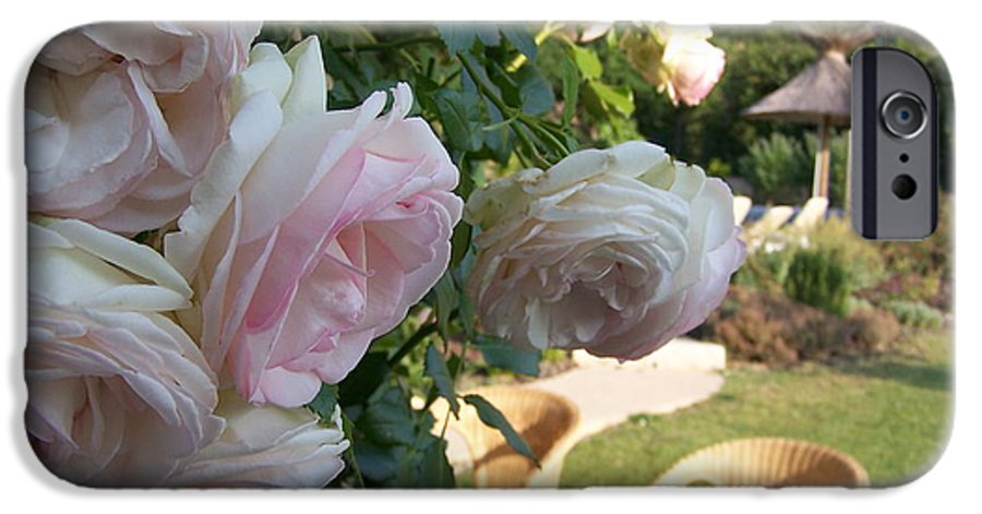 Roses IPhone 6 Case featuring the photograph Villa Roses by Nadine Rippelmeyer