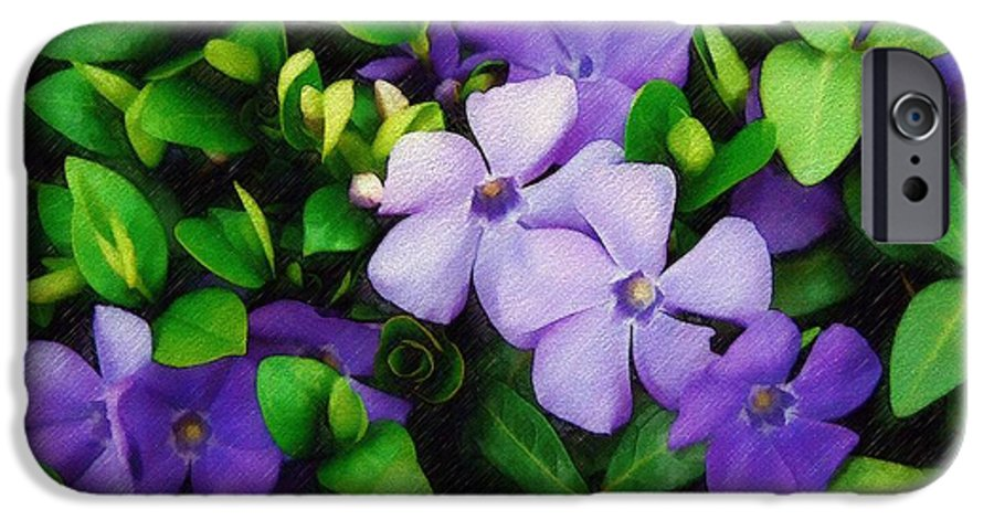 Vinca IPhone 6 Case featuring the photograph Vinca by Sandy MacGowan