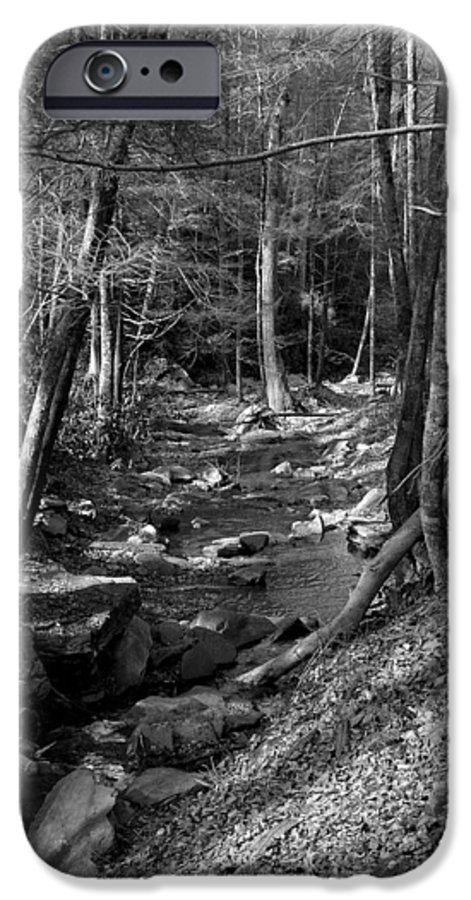 Nature IPhone 6 Case featuring the photograph Wesser Creek Trail by Kathy Schumann