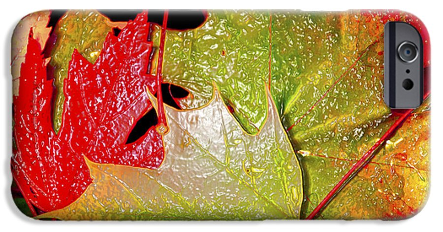 Leaves IPhone 6 Case featuring the photograph Wet Leaves Of Fall by Larry Keahey