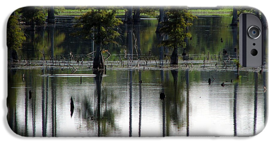 Wetlands IPhone 6 Case featuring the photograph Wetland by Amanda Barcon