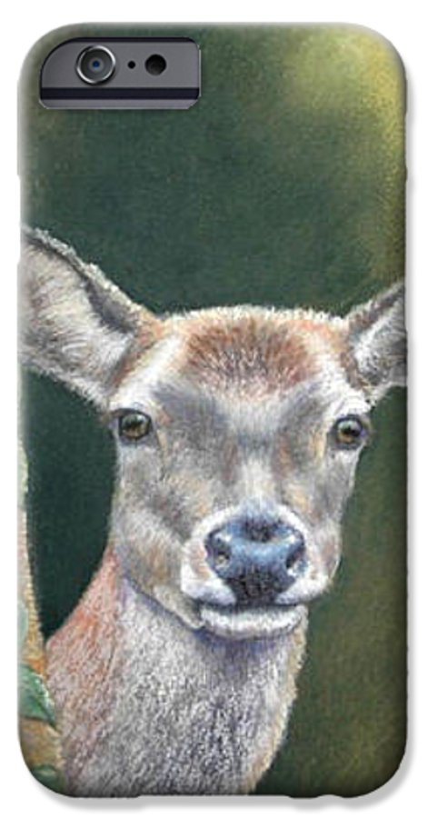 Rainforest IPhone 6 Case featuring the painting White Tail Doe At Ancon Hill by Ceci Watson