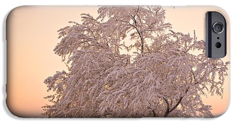 Winter IPhone 6 Case featuring the photograph Winter Sunset by Marilyn Hunt