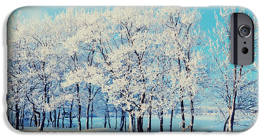 Magic IPhone 6 Case featuring the photograph Winter Landscape - Snowy Beautiful by Marina Zezelina