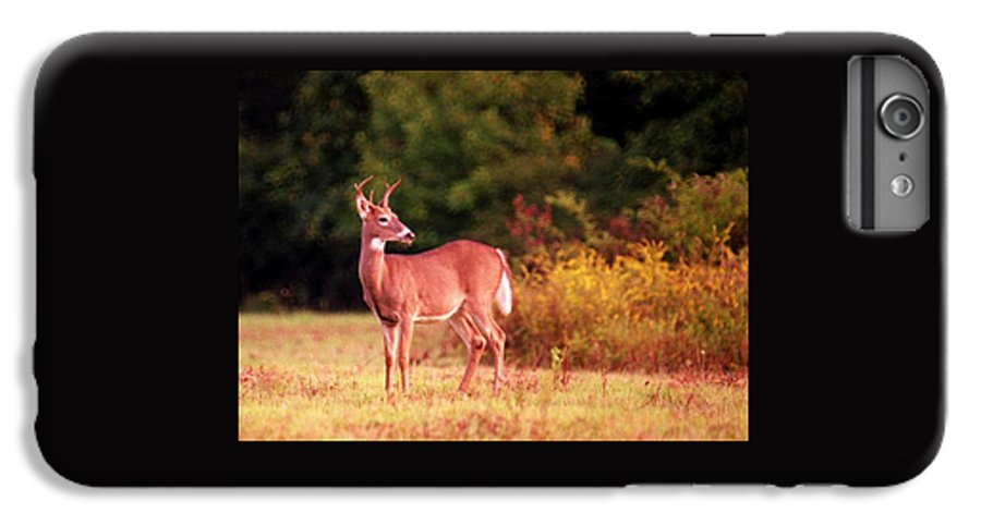 Deer IPhone 6 Plus Case featuring the photograph 070406-58 by Mike Davis