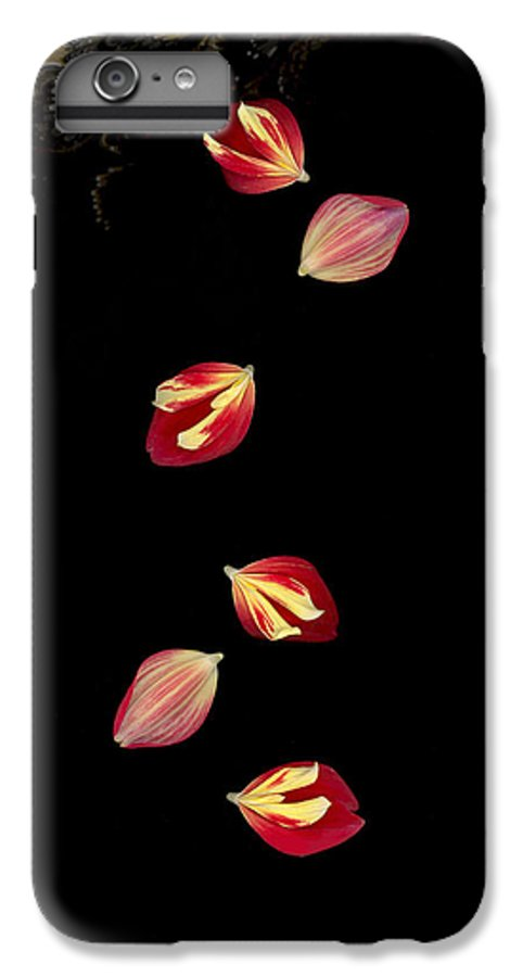 Petal IPhone 6 Plus Case featuring the photograph Falling by Suzanne Gaff