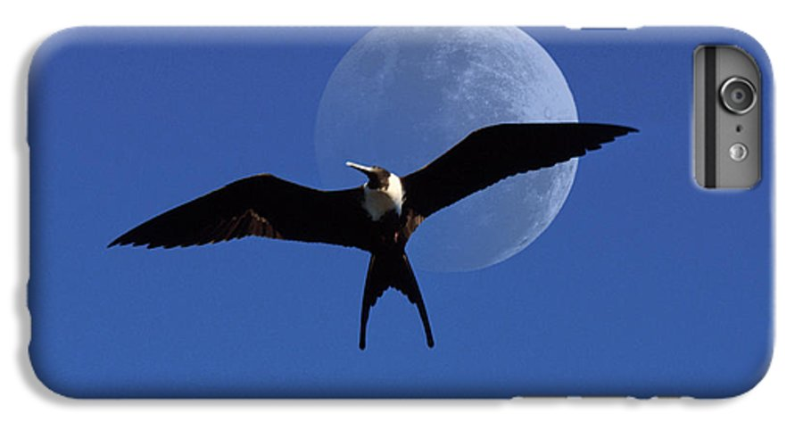 Frigate IPhone 6 Plus Case featuring the photograph Frigatebird Moon by Jerry McElroy