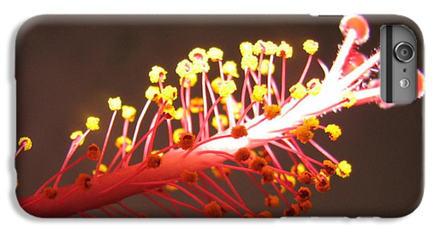 Hibiscus IPhone 6 Plus Case featuring the photograph Hibiscus by Mary Ellen Mueller Legault