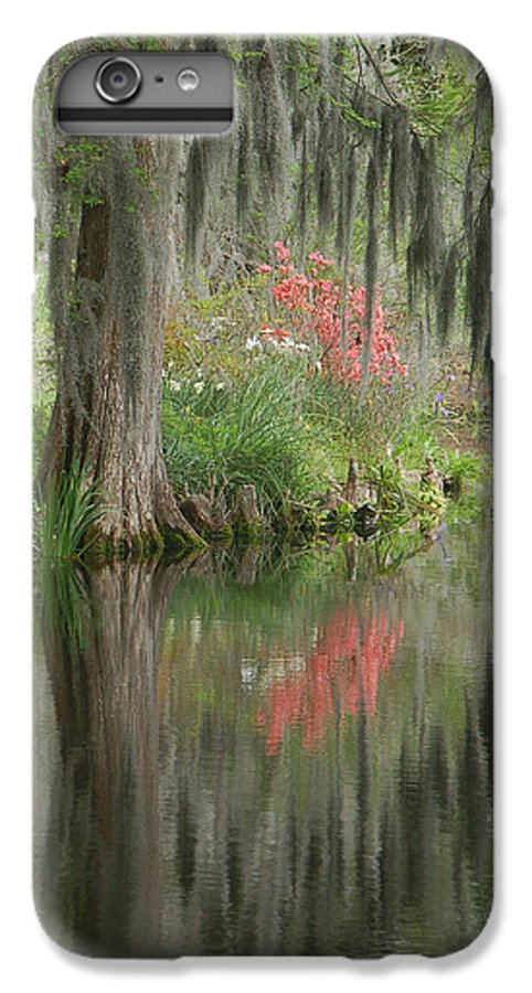 Lowcountry IPhone 6 Plus Case featuring the photograph Lowcountry Series I by Suzanne Gaff