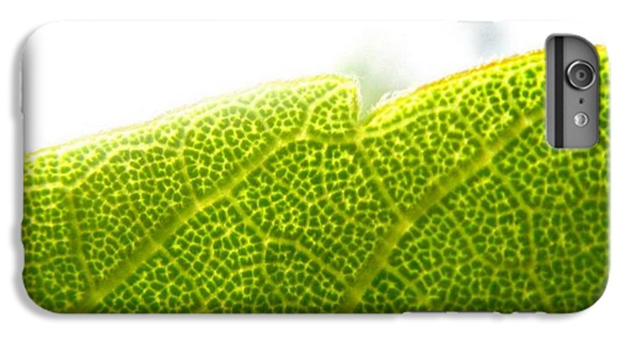 Leaf IPhone 6 Plus Case featuring the photograph Micro Leaf by Rhonda Barrett