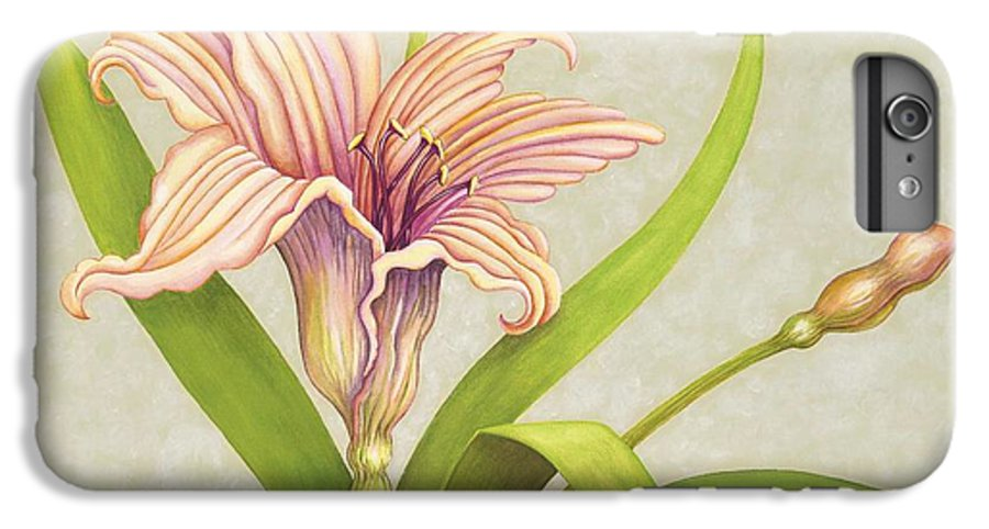Soft Peach Lily In A Pose IPhone 6 Plus Case featuring the painting Peach Lily by Carol Sabo