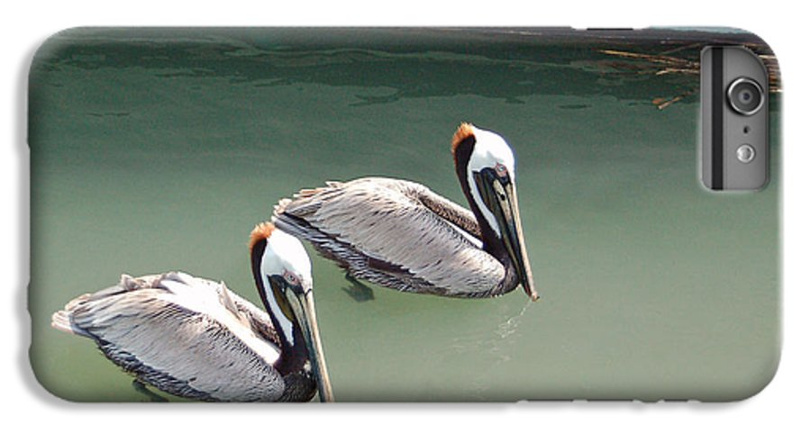 Brown Pelican IPhone 6 Plus Case featuring the photograph Pelicans Partners by Suzanne Gaff